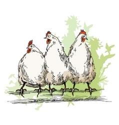 Chiken sketches vector