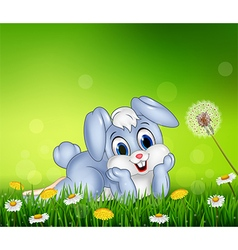 Cute little bunny on grass background vector image