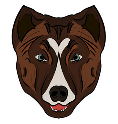 image of a dog head vector image