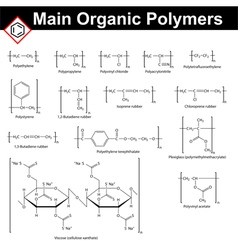 Main polymers vector