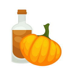 pumpkin seed oil in bottle flat isolated vector image