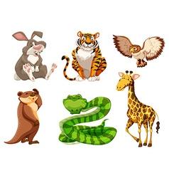 Set of different wildlife vector image