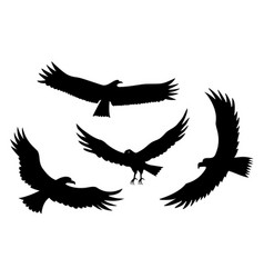 Silhouettes flying eagles bird predator vector