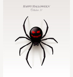 spider with a pattern on abdomen in form an vector image