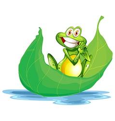 A smiling frog on the big leaf vector image