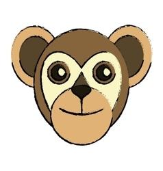 capuchin primate brazil fauna drawing vector image