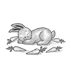 cartoon sleeping rabbit sketch vector image