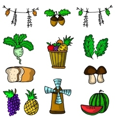 Doodle of thanksgiving fruit set vector