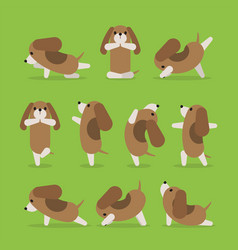 yoga dog poses set vector image