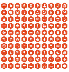 100 fruit icons hexagon orange vector