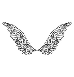 angels wings ornamental baroque style element vector image