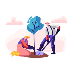 Couple male and female pensioners planting tree vector