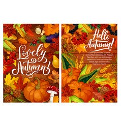 Hello autumn posters with harvest and fall leaves vector