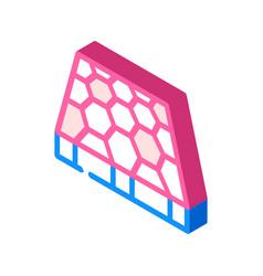 Sport ground floor layer isometric icon vector