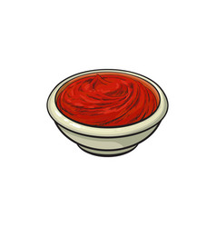 tomato sauce ketchup in ceramic bowl vector image