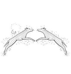 Zen tangle wild dog zentangle wolf coloring vector