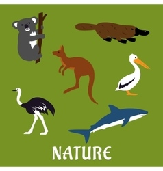 Australian animals and birds flat icons vector image vector image