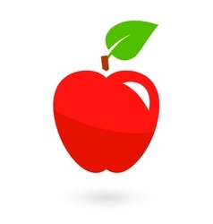 fruit icon with isolated apple vector image