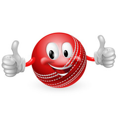 Cricket ball man vector