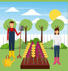 Gardeners working field with flowers tools tree vector