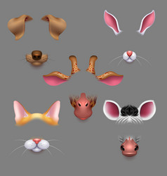 Animal ears and noses selfie photo filters vector