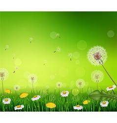 Beautiful Spring or summer season nature vector image