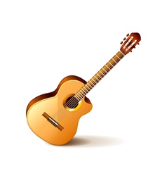 Classic guitar isolated on white vector