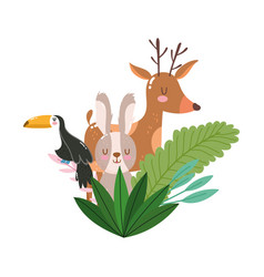 Cute animals reindeer toucan and rabbit foliage vector