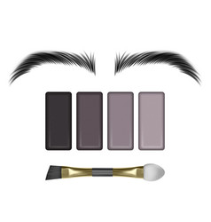 Eyebrow color swatch on white background vector