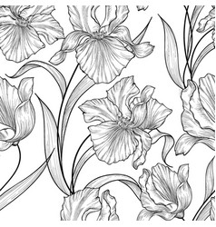 floral seamless pattern flower iris engraving vector image