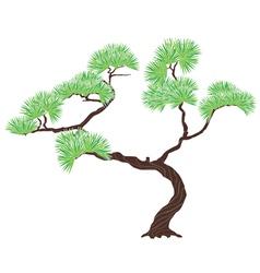 green tree pine vector image