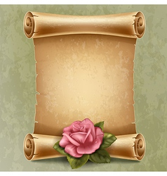 Old paper with rose vector image vector image