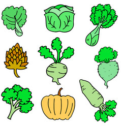 Doodle of fresh vegetable various vector