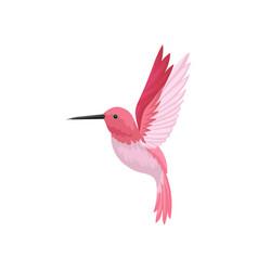 Flat icon of flying hummingbird colibri vector
