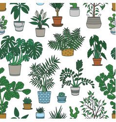 seamless pattern with houseplants growing in pots vector image