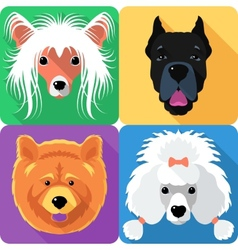 Set dog head icon flat design vector