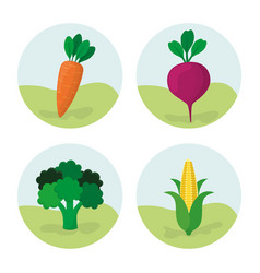 Vegetables fresh food nutrition vector