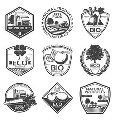 monochrome bio natural labels set vector image