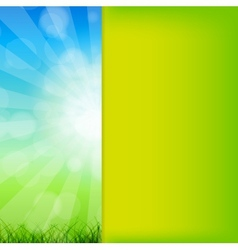 Summer Abstract Background with grass and vector image