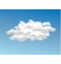 cloud realistic 3 vector image