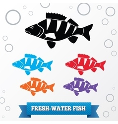 Fish icon set Perch redfin perch Percidae vector