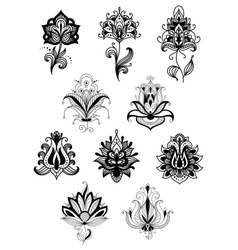 Indian lacy flowers with paisley ornament vector