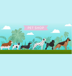 Pet shop banner with different dogs breeds vector