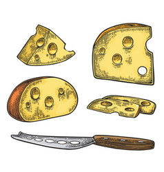 pieces cheese and knife half round head and vector image
