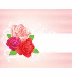rose banner vector image