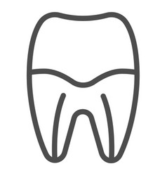 Tooth root line icon tooth canal vector