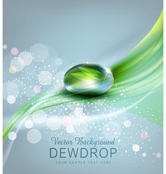 Drop of dew and reflection sheet in dew drop vector