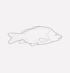carp icon line element of vector image
