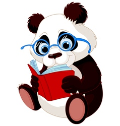 Cute Panda Education vector image