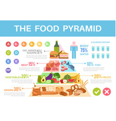 food pyramid nutritional value healthy eating vector image